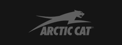 arctic-cat-back